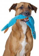 Petstages Stuffing Free Floppy Shark (52 cm)